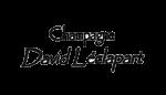 David Léclapart